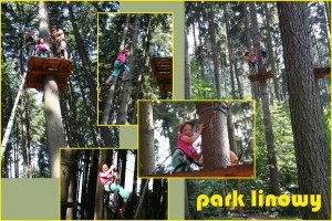 park linowy3