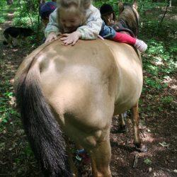 na koniu inaczej